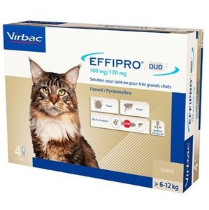 Effipro Duo spot-on grote kat 4 x 1,0ml (6-12kg)