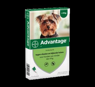 Advantage Hond 40 4 pip. (tot 4kg)