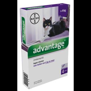 advantage 80 kat
